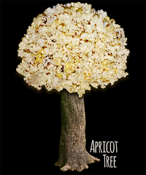 Apricot Tree Popcorn Popping Shirt