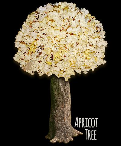 Apricot Tree Popcorn Popping Shirt
